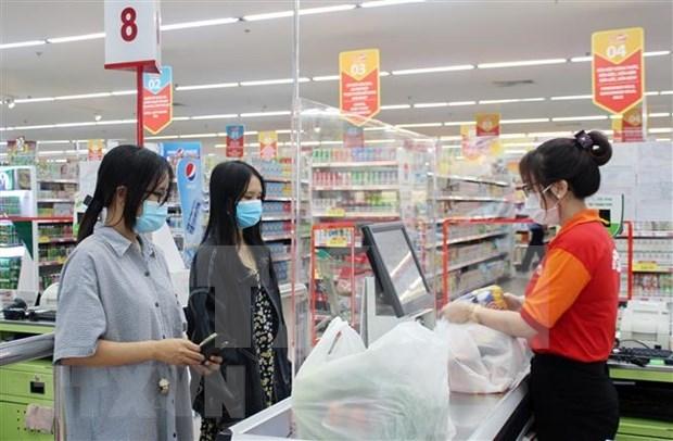 俄罗斯乌德穆尔特共和国政府高度评价与越南的合作潜力 hinh anh 1