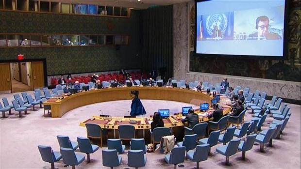 越南呼吁国际社会为维护中非和平与稳定提供支持 hinh anh 1