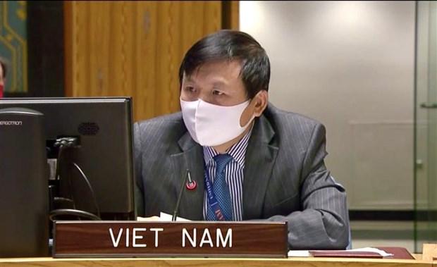 越南呼吁国际社会为维护中非和平与稳定提供支持 hinh anh 2