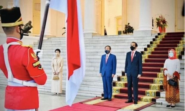 印尼与日本一致同意加强多个领域的合作 hinh anh 1