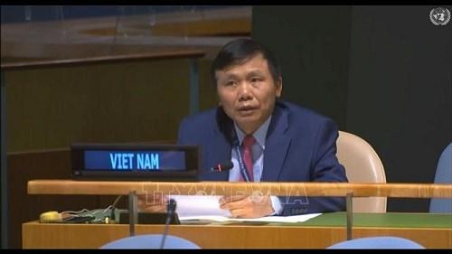 越南承诺为加强国家和国际层面的法治作出贡献 hinh anh 1