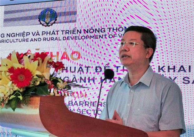 2020年越南水产品对欧盟出口额将下降20% hinh anh 1