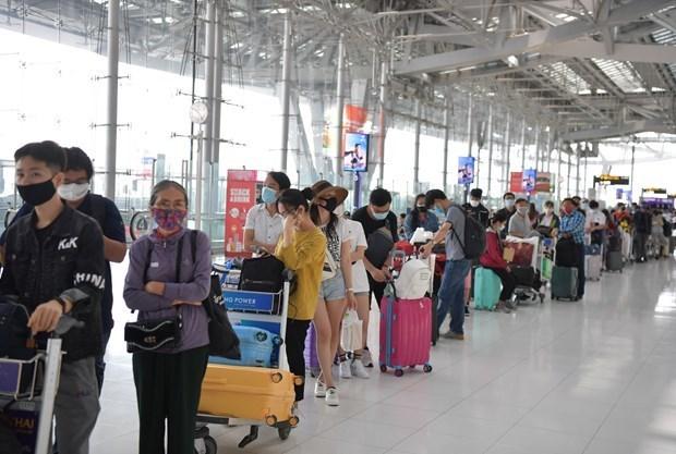 滞留菲律宾的240余名越南公民安全回国 hinh anh 1