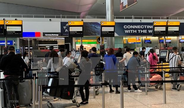 将在德国和欧洲部分国家滞留的280名越南公民安全接回国 hinh anh 1