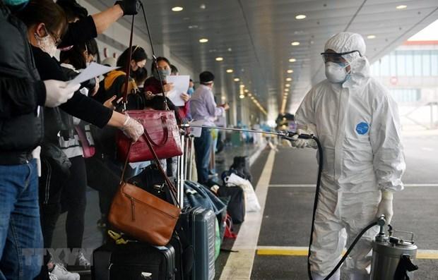 新冠肺炎疫情:越南新增12例输入性确诊病例 入境后立即接受隔离 hinh anh 1