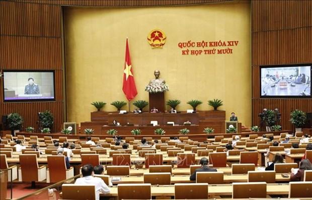 第十四国会第十次会议:参加联合国维和力量有助于提高越南的地位和威望 hinh anh 1