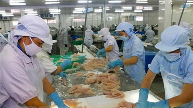 波兰市场为越南水产品敞开大门 hinh anh 1