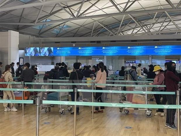 将在加拿大和韩国的350余名越南公民接回国 hinh anh 1