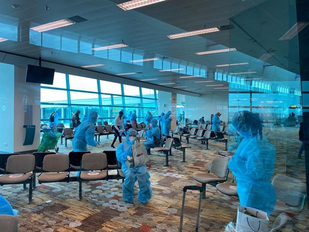 新冠肺炎疫情:将滞留新加坡的240余名越南公民接回国 hinh anh 1
