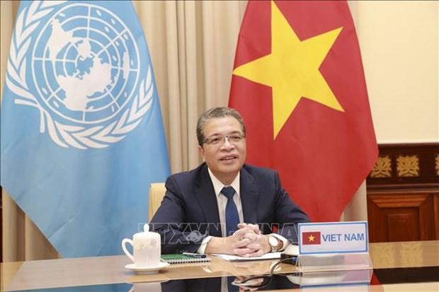 越南呼吁国际社会协助巴勒斯坦克人民克服危机 hinh anh 1