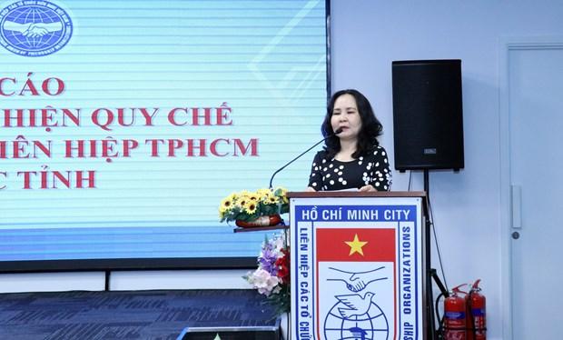 越南南部各省市加强配合提升民间外交工作协调制度执行力 hinh anh 1