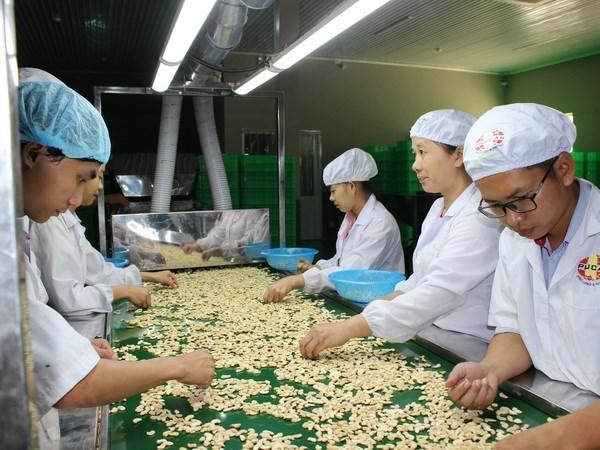 今年前10月越南农林水产品实现贸易顺差79亿美元 hinh anh 2