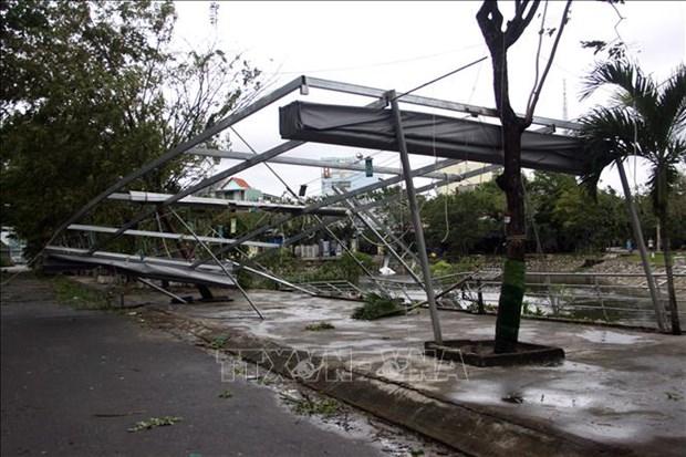 郑廷勇副总理:立即开展台风过后5项紧迫任务 hinh anh 2