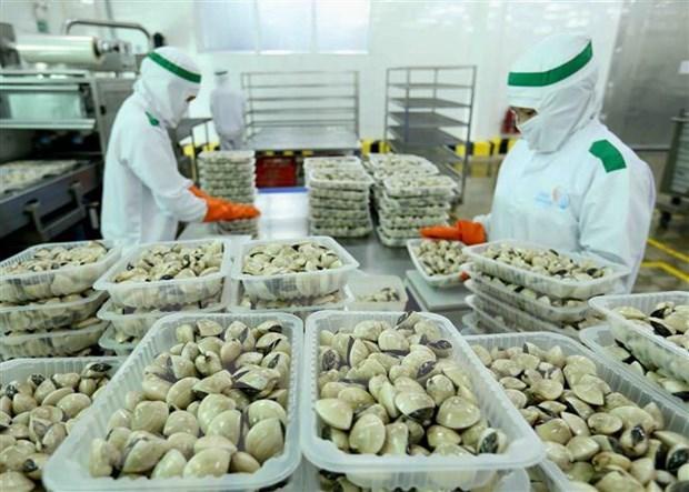 2020年前10月份全国商品出口额增长4.7% hinh anh 1