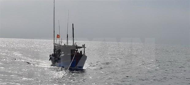继续开展在海上失踪的平定省26名渔民的搜救工作 hinh anh 1