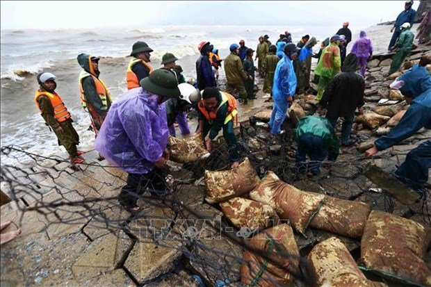 越南各地继续向灾民开展灾后重建工作提供援助 hinh anh 2
