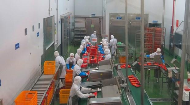 越南企业深入了解EVFTA以充分利用其带来的机会 hinh anh 1