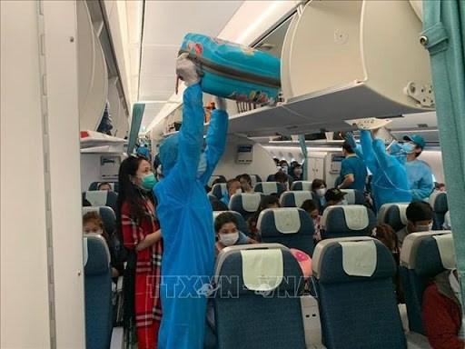 越南将滞留在马来西亚的近290名公民接回国 hinh anh 1