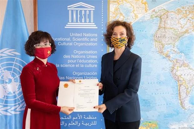 越南驻法国大使向联合国教科文组织提交委任书 hinh anh 1