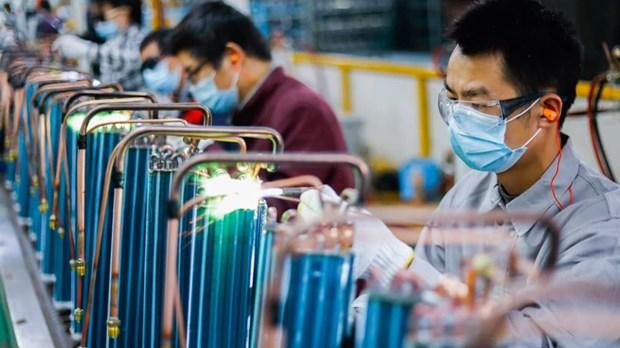 新加坡媒体:越南经济复苏情况好于预期 hinh anh 1