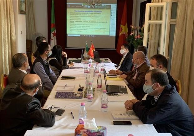 越南与阿尔及利亚加强贸易与投资合作 hinh anh 1