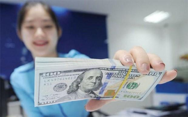 2020年前10个月胡志明市侨汇收入达47亿美元 hinh anh 1