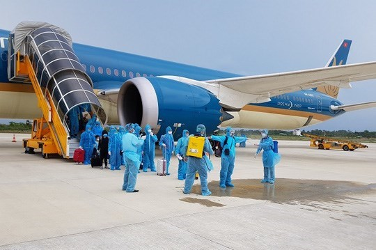将在新加坡的240余名越南公民接回国 hinh anh 1