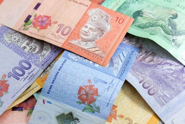 马央行:马来西亚9月底国际外汇储备金额达近1050亿美元 hinh anh 1