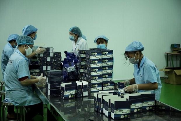 与众不同的产品助力胡志明市企业推动出口 hinh anh 1