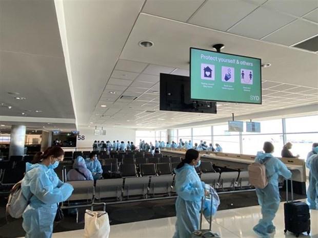 新冠肺炎疫情:继续将境外滞留的越南公民接回国 hinh anh 1