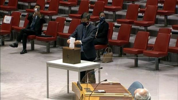 越南代表参加投票选举国际法院法官 hinh anh 1