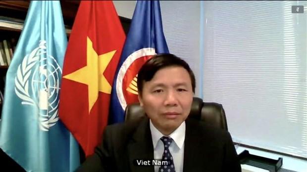 越南和联合国安理会:越南呼吁也门有关各方执行停火协议 hinh anh 1