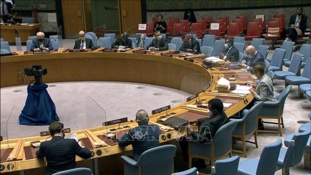 越南代表参加投票选出国际法院5名新法官 hinh anh 1