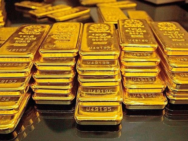 13日上午越南国内黄金价格每两上涨5万越盾 hinh anh 1