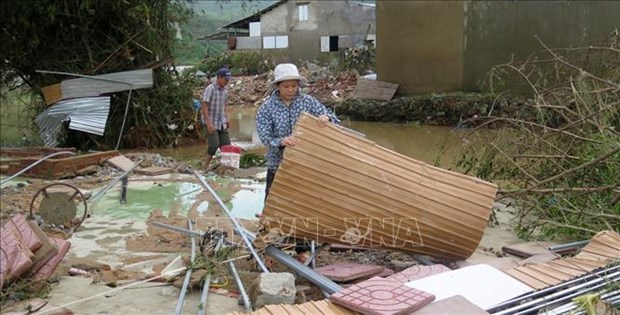 加拿大政府为越南中部地区洪灾灾民提供人道主义援助 hinh anh 1