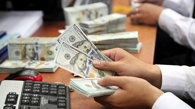 13日上午越盾对美元汇率中间价下调5越盾 hinh anh 1