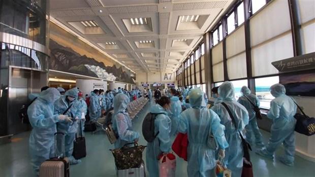 把滞留在中国台湾和日本的越南公民安全接回国 hinh anh 1