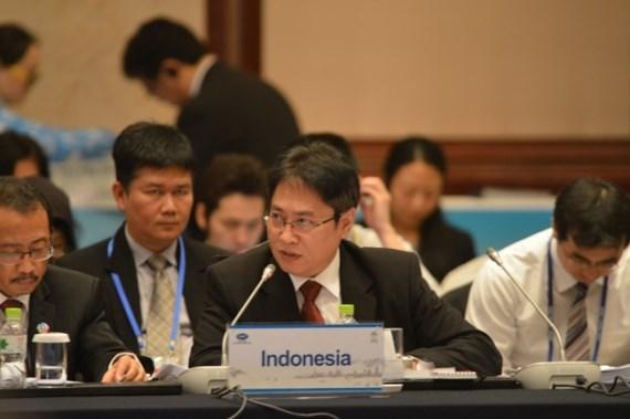 RCEP贸易谈判委员会主席对开放且基于规则贸易的展望持有乐观态度 hinh anh 1