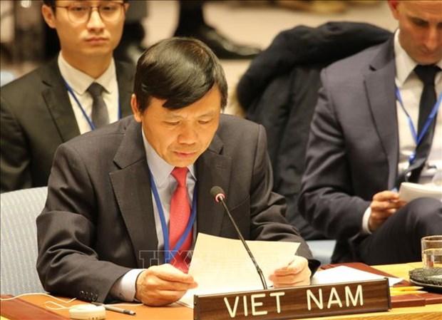 越南与联合国安理会:越南支持有关增加安理会理事国数量的改革方案 hinh anh 1
