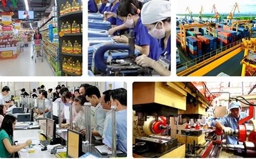 后疫情时代越南中小企业的乐观态度 hinh anh 1