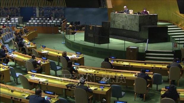 越南与联合国安理会:越南支持有关增加安理会理事国数量的改革方案 hinh anh 2