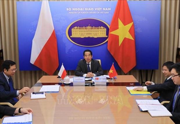 越南与波兰外交部副部长级政治磋商以视频形式举行 hinh anh 1
