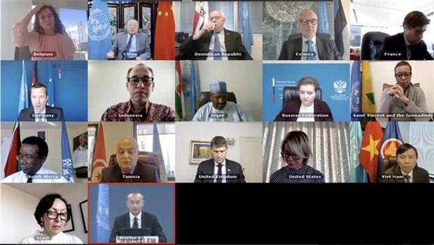 越南与联合国安理会:越南希望以色列与巴勒斯坦尽早重返谈判桌 hinh anh 1
