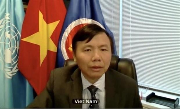 越南与联合国安理会:越南希望以色列与巴勒斯坦尽早重返谈判桌 hinh anh 2