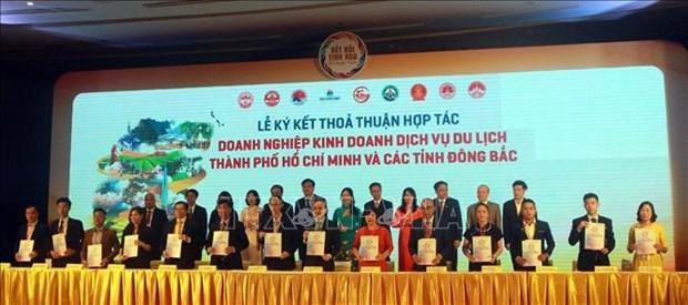 促进胡志明市与东北地区各省的旅游发展与对接 hinh anh 1