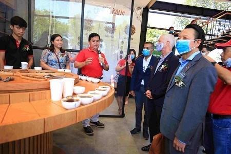 咖啡庄园——激发越南人对咖啡的热爱 hinh anh 1