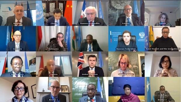越南与联合国安理会:越南和印度尼西亚强烈谴责针对在索马里驻扎军队和维和力量的暴力行为 hinh anh 1