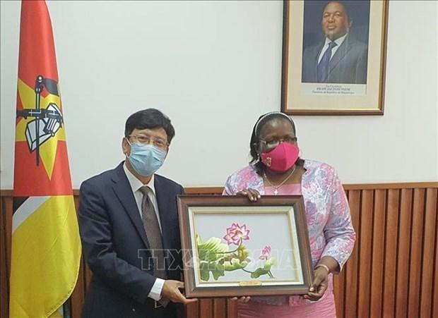 莫桑比克赞扬越南在东盟和联合国安理会事务中发挥的积极作用 hinh anh 1