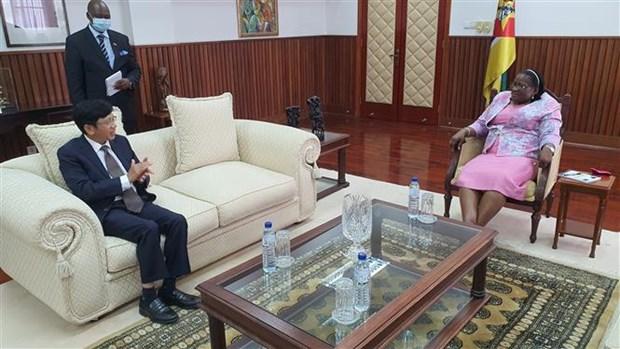 莫桑比克赞扬越南在东盟和联合国安理会事务中发挥的积极作用 hinh anh 2
