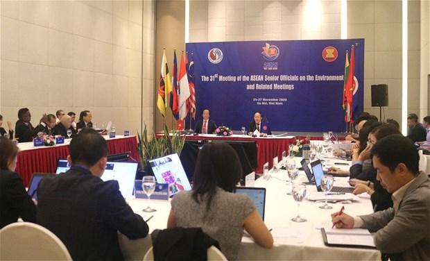 第31届东盟环境高级官员会议面向可持续生态系统 hinh anh 2